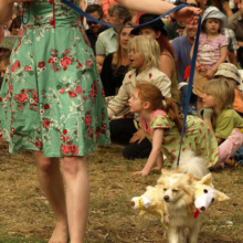 The JAF Dog Show