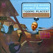 DJ Ashley Bird